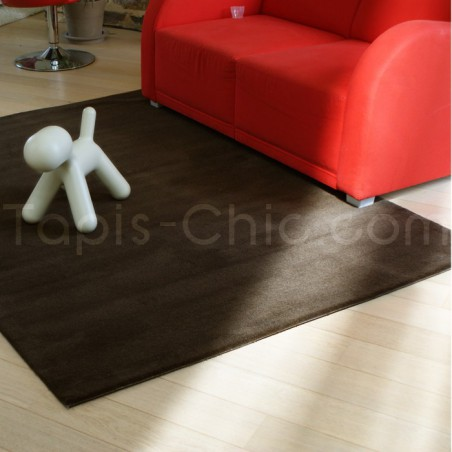 Tapis Uni Moderne Spirit Chocolat rectangulaire par Arte Espina