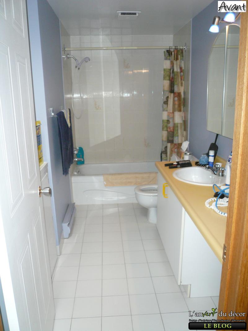 Idées designer d'intérieur salle de bain