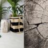 Osez un tapis de forme originale pour un relooking personnalisé !